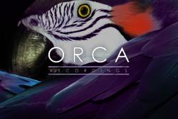 ORCA RECORDINGS